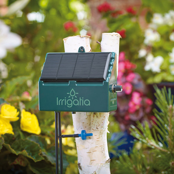 irrigatia