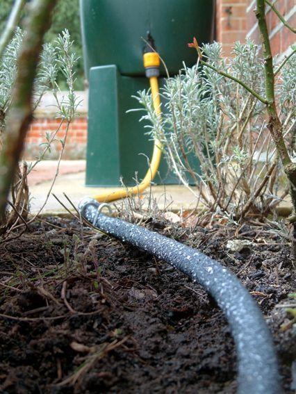 wąż pocący się nawadniający linia kroplująca
