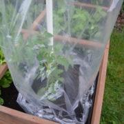 folia do pomidorów perforowana