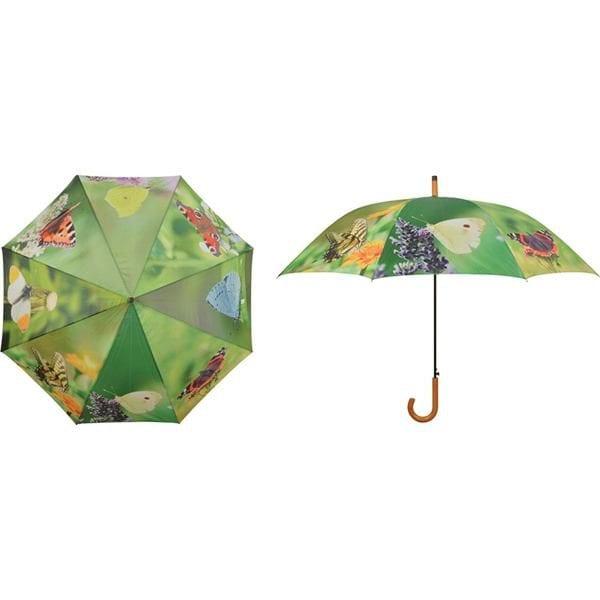 parasol motyle 1