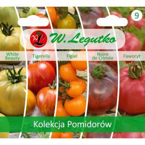 kolekcja pomidorów wysokich